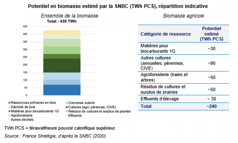 Biomasse agricole : quelles ressources pour quel potentiel - Graphique 2