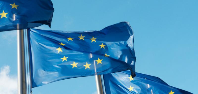 Budget de l'UE : promouvoir de nouveaux outils pour faciliter la gestion de crise et favoriser la convergence économique