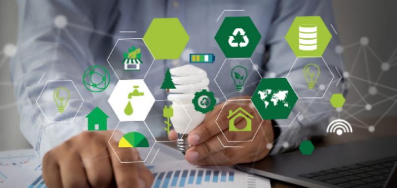Labels RSE. Propositions pour des labels RSE sectoriels destinés aux TPE, PME et ETI