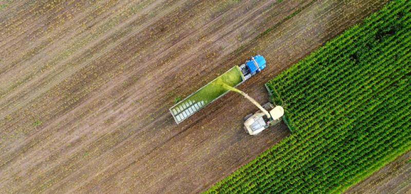 Quels sont les impacts de notre alimentation sur l'environnement ?