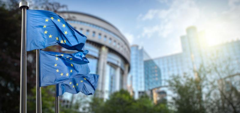 Webconférence - Faut-il un budget pour la zone euro ?