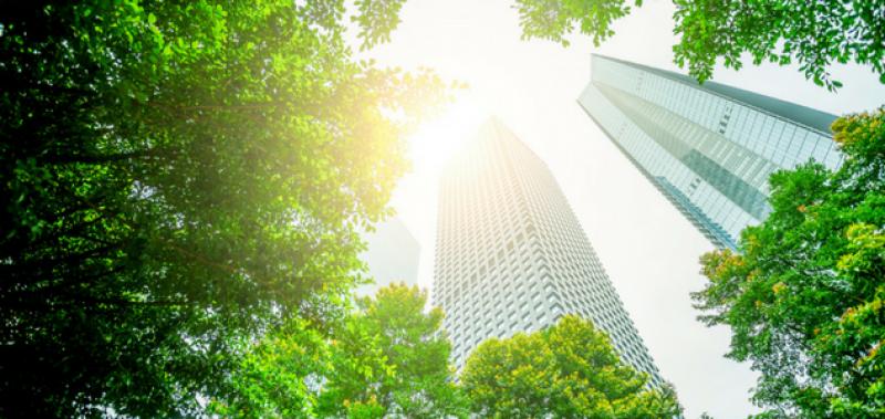 Quels sont les ingrédients d'une transition énergétique réussie à l'échelle des territoires ?