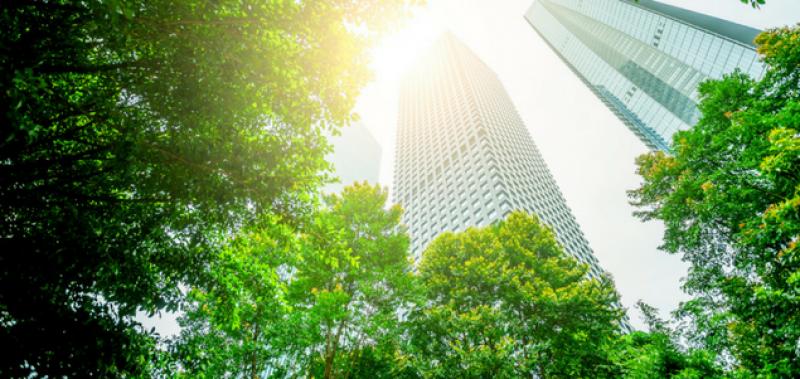 Le rôle du droit dans la protection de l'environnement
