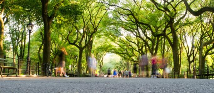 Climate Week New-York