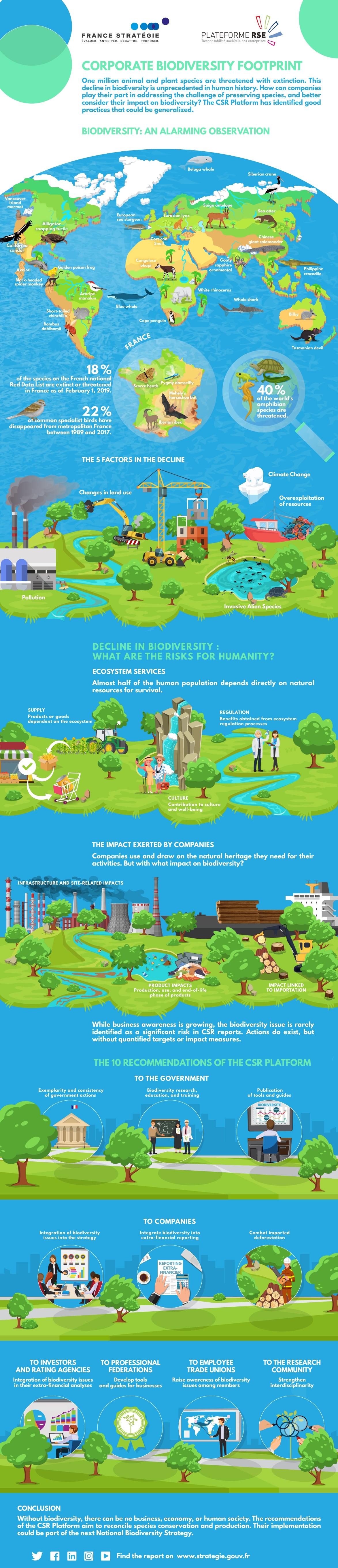 Corporate biodiversity footprint