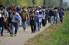 The EU's Refugee Crisis