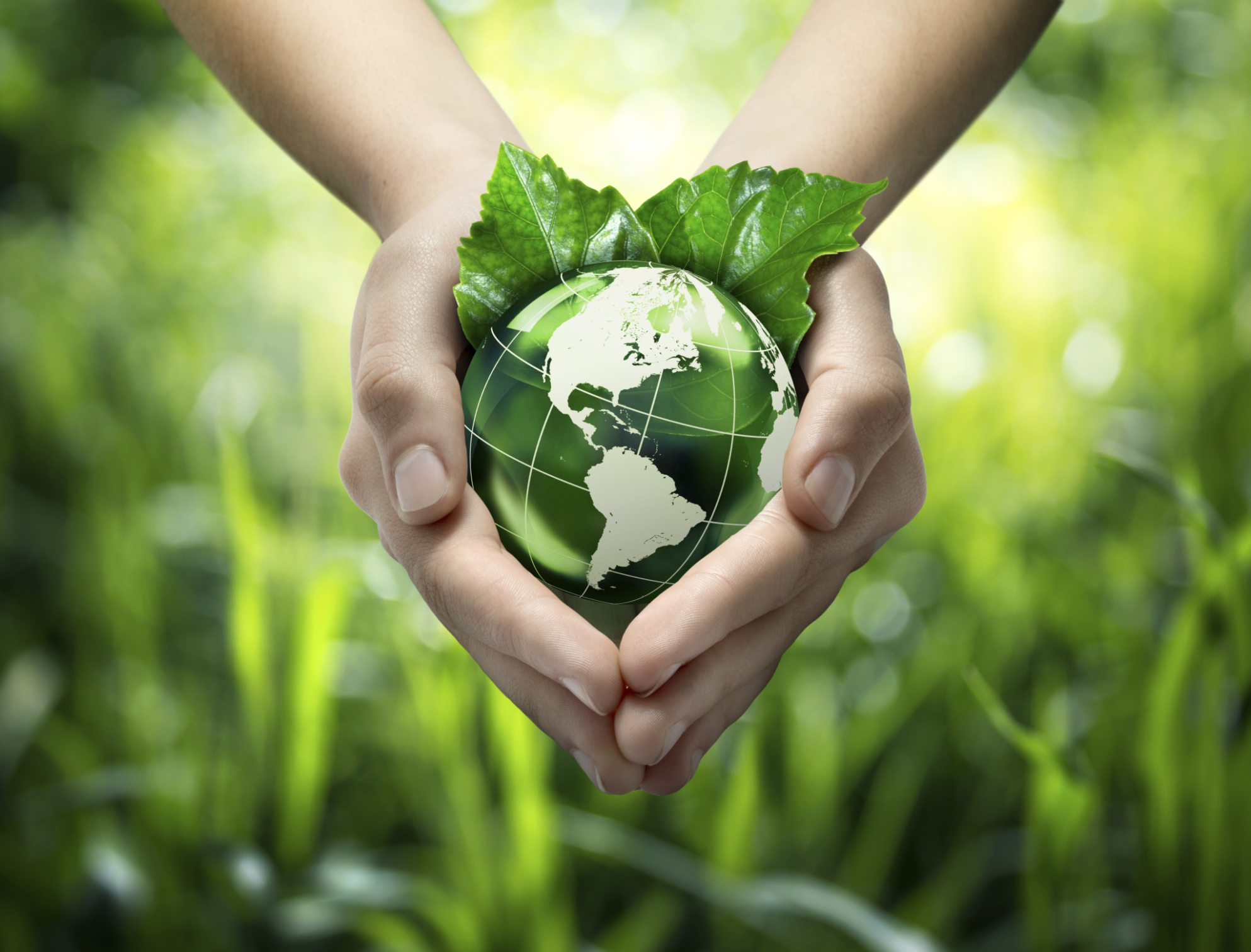 Why Finance Can Save the Planet?