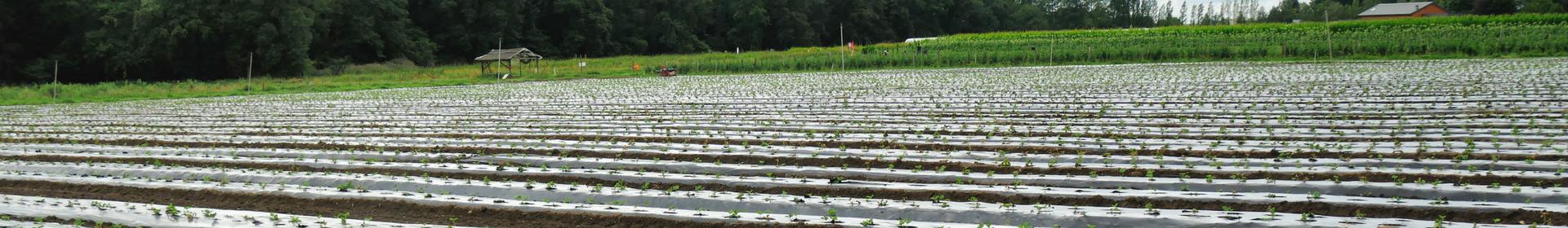 Lancement du groupe de travail « Adaptation de l'agriculture aux défis environnementaux »