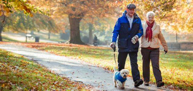 La retraite, le patrimoine de ceux qui n'en ont pas ?