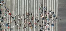 L'emploi en 2020 : géographie d'une crise