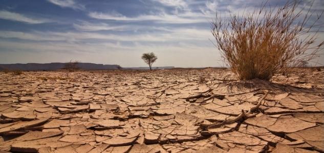 Sécuriser les investissements bas-carbone-ok