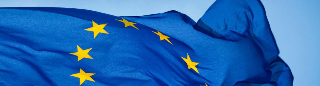 Quelle architecture pour la zone euro ?