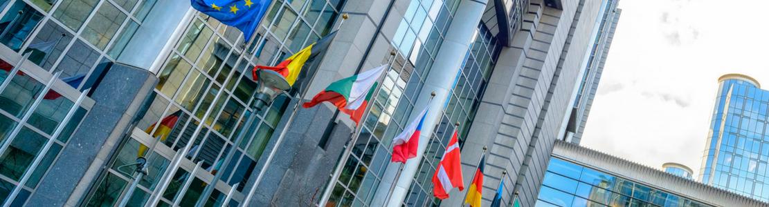 Identification et effets des politiques budgétaires expansionnistes dans les pays de l'OCDE
