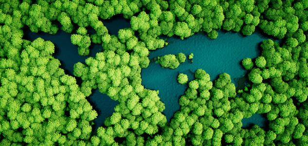 Transition climatique : peut-on mieux dépenser ?