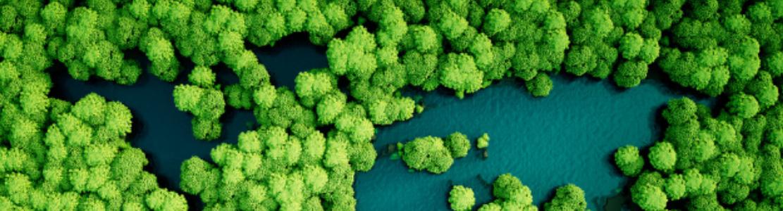 Webconférence – Empreinte biodiversité des entreprises